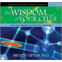 The Wisdom of Your Cells af Bruce Lipton
