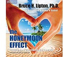 Bruce Lipton - Honeymoon-effekten